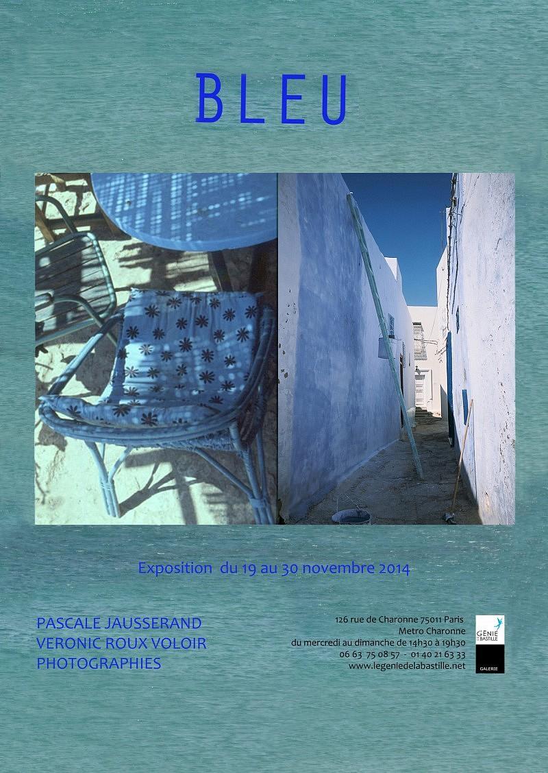 Expo-Bleu-Nov-2014-web